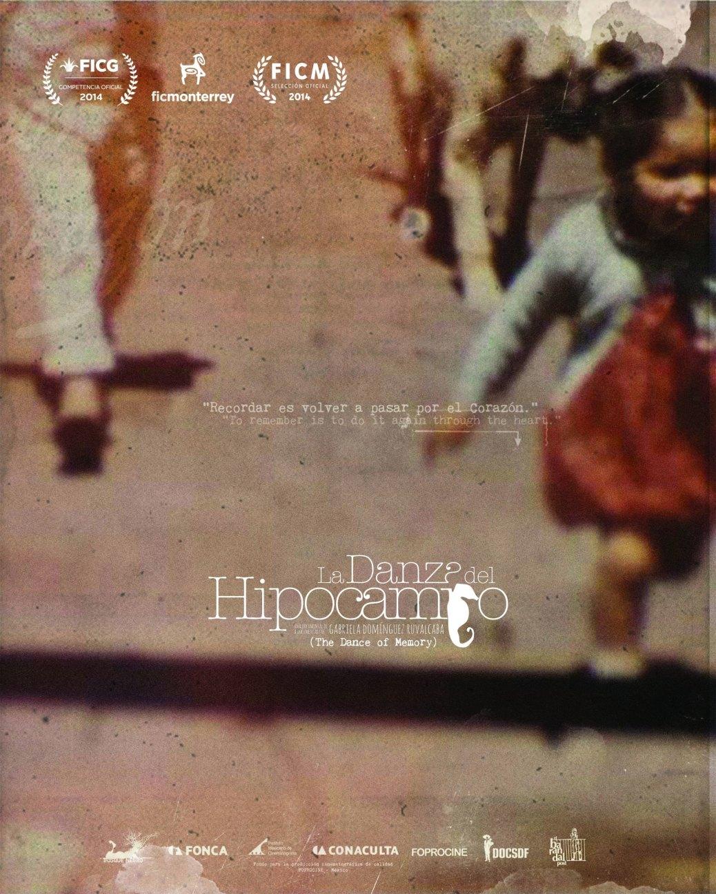 danza hipocampo poster